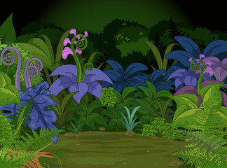 Jungle Landscape