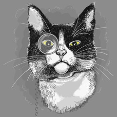 Portrait of a cat in a monocle. Illustration