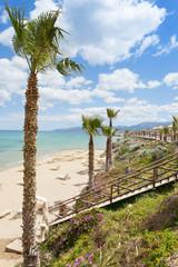 Kreta - Griechenland - Palmen von Chersonissos