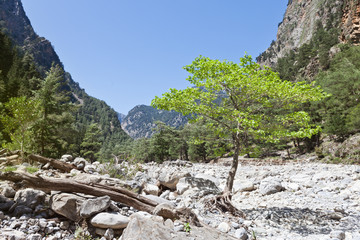 Kreta - Griechenland - Ruhe der Samaria-Schlucht