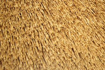 Straw roof background
