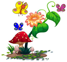 Colourful butterflies surrounding the plants