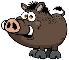 Vector illustration of Wild boar