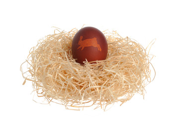 Easter decorated egg in nest isolated