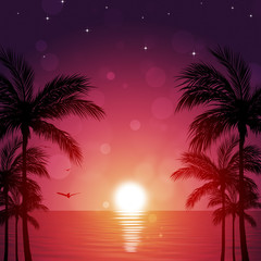Beautiful Tropical Night