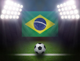 Wall Mural - Soccer Ball with Brazilian in stadium.