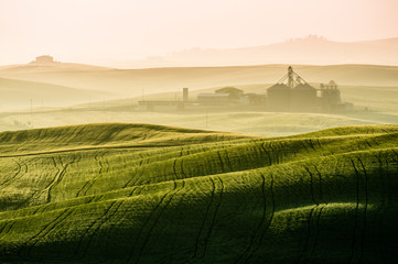 Idyllic view of hilly farmland in Tuscany morning light Wall mural