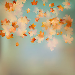 Retro image of Autumn leaves on the sky. EPS 10