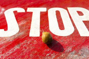 The garden snail and stop traffic sign