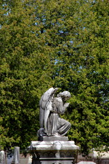 Gorgeous statue of stone angel in cemetery