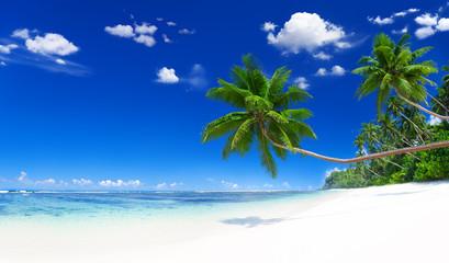 Tranquil Scene Beach