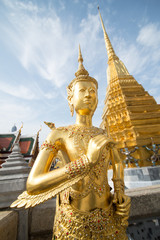 Golden Angle at Wat Phra Kaeo