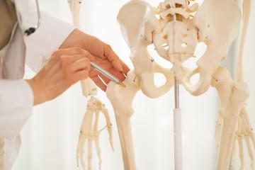 Closeup on doctor woman pointing on femur of human skeleton