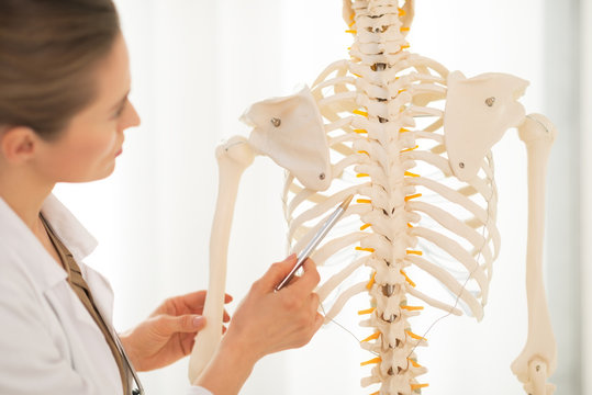 Closeup on doctor woman pointing on spine of human skeleton