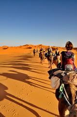 MERZOUGA DESERT - OCTOBER 01: Tourists in a Camel caravan in Mer