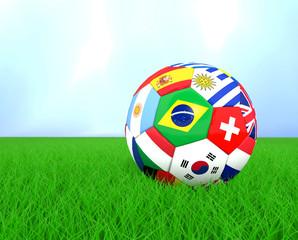pallone multi bandiere su erbetta luce naturale