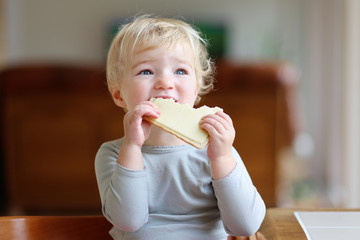 Cute toddler girl eating sandwich in the morning