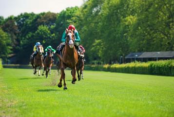 Rennpferde mit Jockeys auf der Zielgeraden
