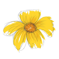 Vector drawn and painted flower