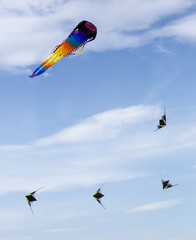 Group of the colored kites in the blue sky