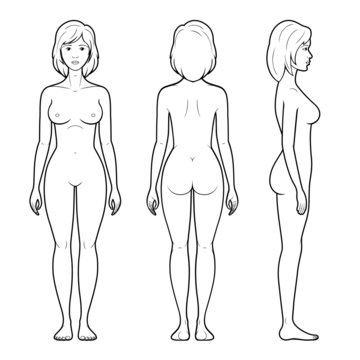 Illustration of female figure