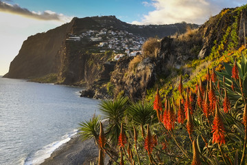 Madeira island, looking towards Camara de Lobos
