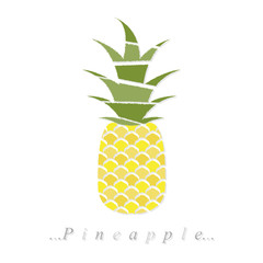 Vector of fruit, pineapple icon on isolated white background