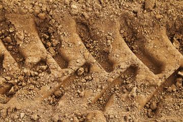 Tyre tracks in mud Wall mural