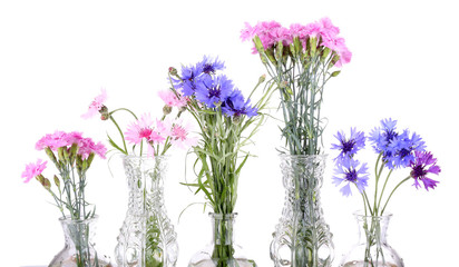 Beautiful summer flowers in vases, isolated on white