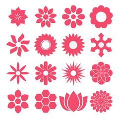 Vector of Flowers in pink