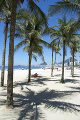 Copacabana Beach Rio de Janeiro Palm Trees