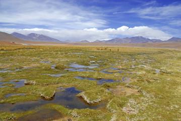 Remote Landscape of Atacama Desert, Chile
