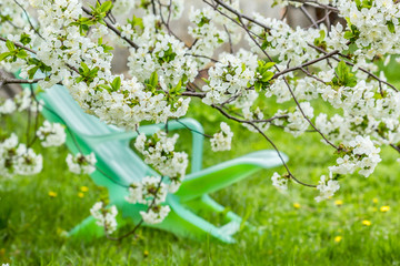 Rest in spring garden