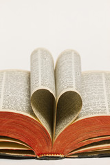 Holy Bible Heart