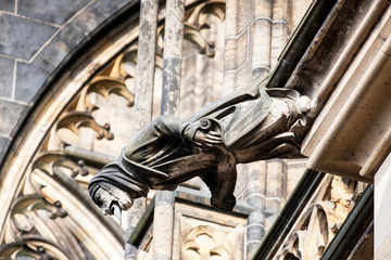 Gargoyle in the Cathedral church Sacred Vitus in Prague, Czech R