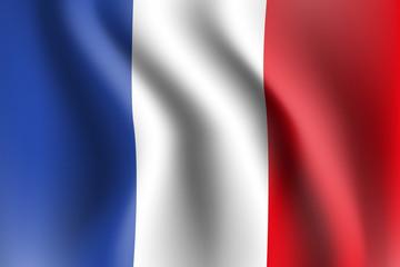flaga Francji wektor