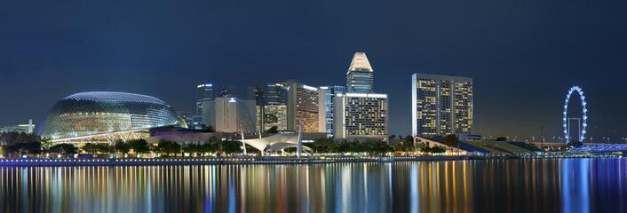 Foto op Plexiglas Singapore Skyline of Singapore at night