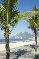 Arpoador Ipanema Beach Rio de Janeiro Palm Tree Shadow