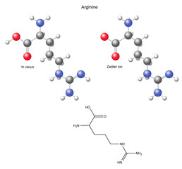 Arginine (Arg) - chemical structural formula and models