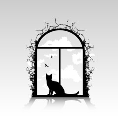 window with cat silhouette