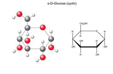 Structural chemical formula and model of alpha-D- glucose