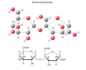 Structural chemical formula and model of sucrose (saccharose)