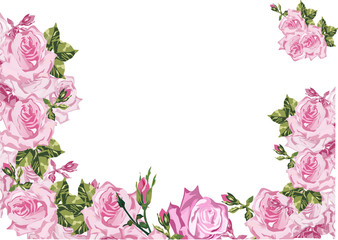 frame decorated by pink rose flowers on white