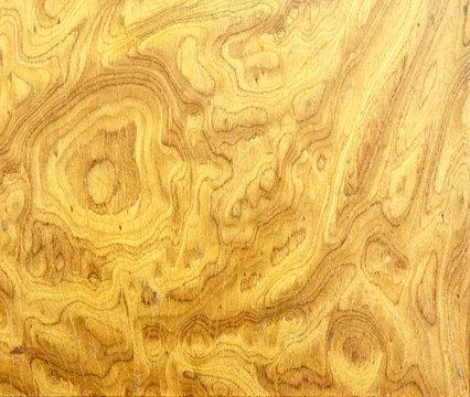 Burl wood background