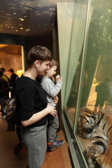 Family looking at tiger