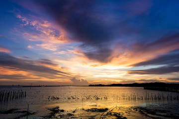 Sea against the twilight sunset sky. .Forest at the river estuar