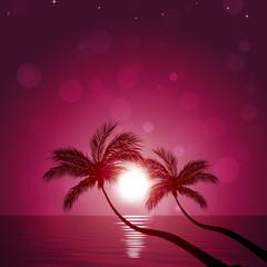 Pacific Dream Land