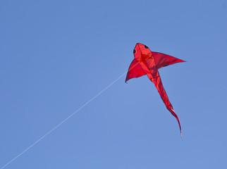 Fish shape kite in the sky