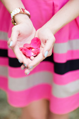 Hand of a woman full of rose petals ready to throw, focus on pet