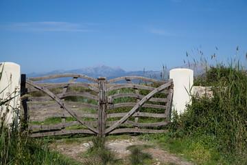 Mallorca  Naturschutzpark Albufera